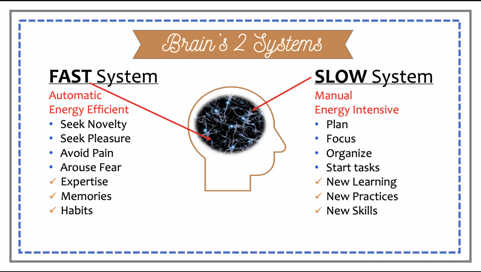 Brain's Two Systems: FAST & SLOW